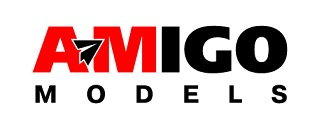 AMIGO models