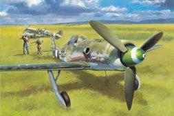 Focke Wulf FW 190D-13 1:48
