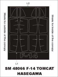 F-14 Tomcat mask for Hasegawa 1:48