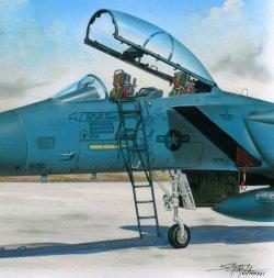 F-15 ladder 1:48