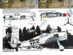 Fw 190F-8/A-8 - the Black 2 1:72