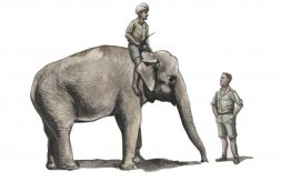RAF Mechanic WWII in India + Elephant with Mahout 1:48
