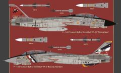 F-14D Super Tomcat 1:48